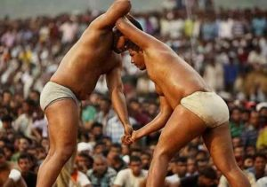 Malla Yudha Traditional Sports of India